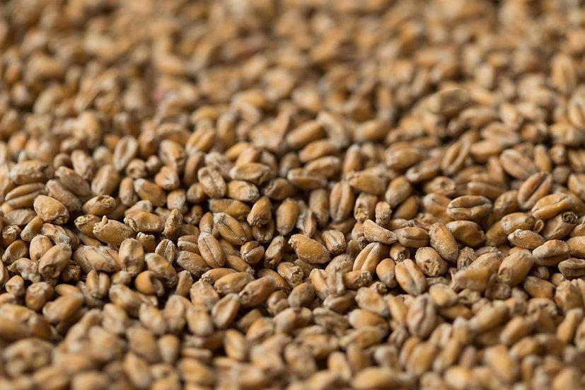 Bulk Wheat Malt (Gladfield)