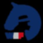 Working Equitation France