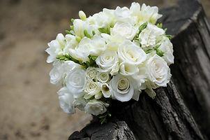 flower-393051_1920.jpg