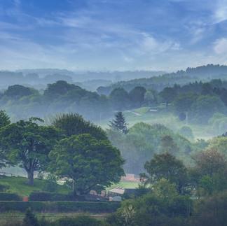 Valley Mist.jpg