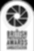 BPA 2018 Ambassador Badge.png