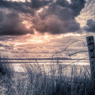 Broken Dune Fence.jpg