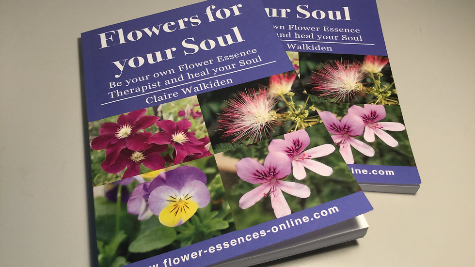 Flowers for your Soul - Paperback Book