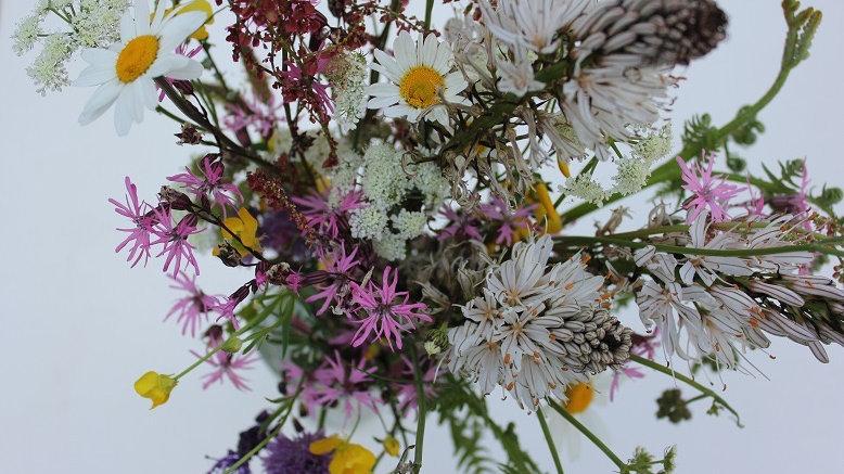 Personalised Flower Essence Blend