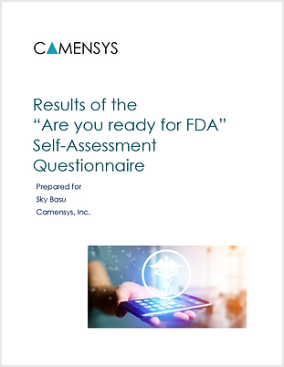 Self-assessment report cover.png