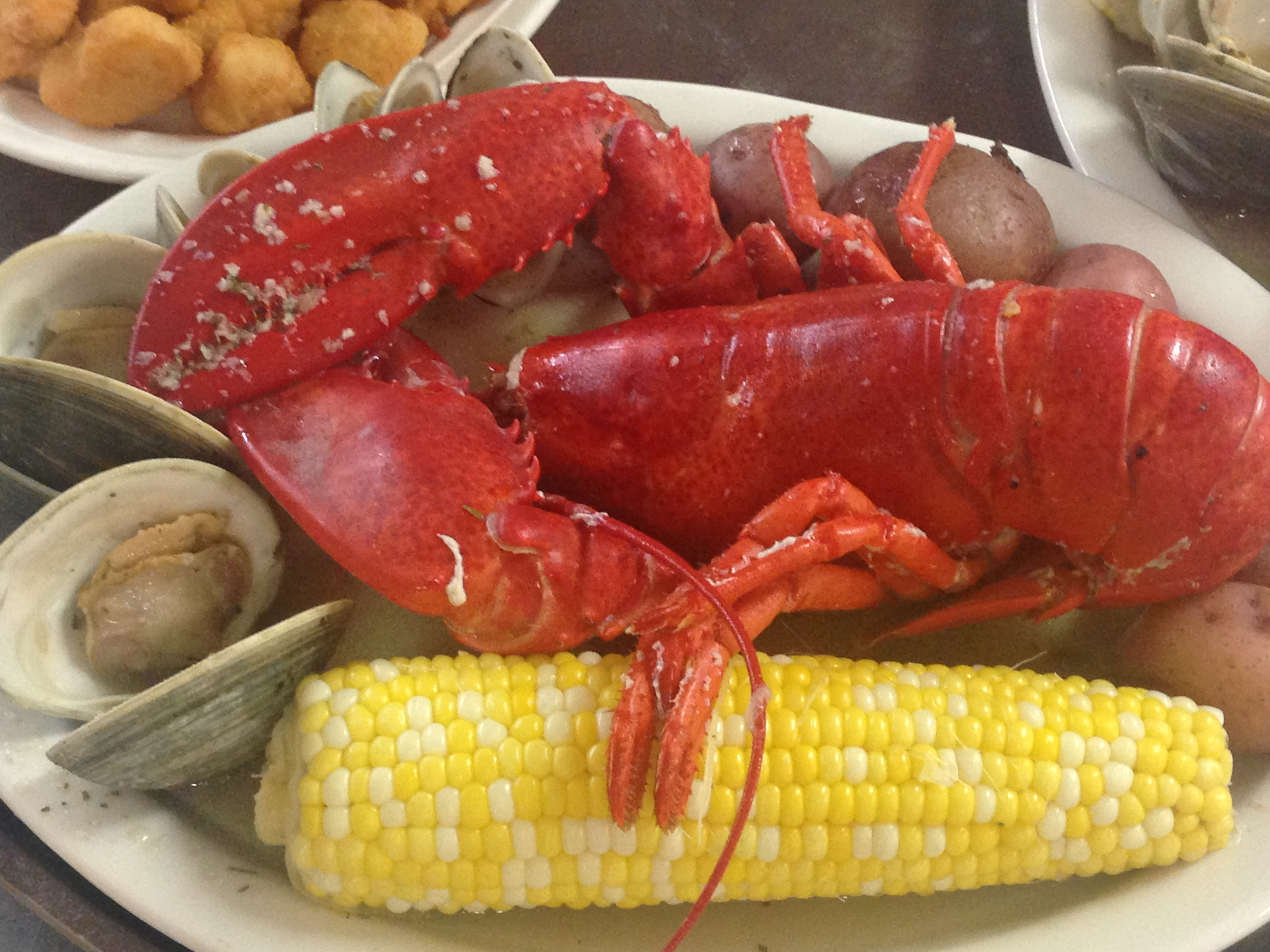 Dino's Seafood: Maine Lobster