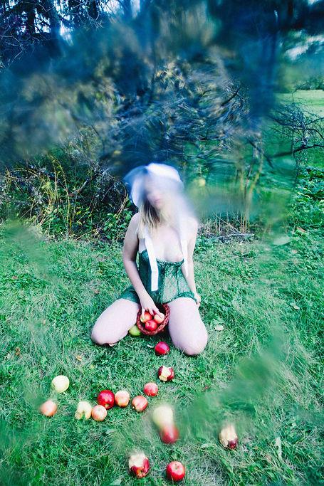 Harvest_Instagram-3.jpg