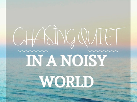 Chasing Quiet in a Noisy World