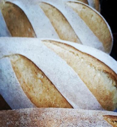 לחם איטלקי מאפיית ברדלי אורן שמואלי