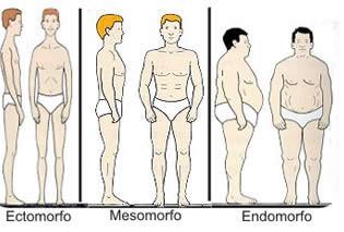 Il biotipo, un importante punto di partenza per personalizzare l'allenamento