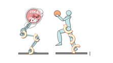 La pesistica olimpica nella preparazione atletica