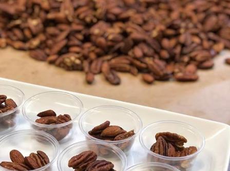 Saltlickers Bangla-Dash Mixed Nuts