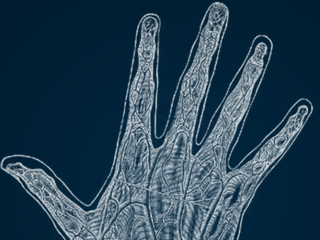 Here We Go Again! Hitachi to Launch Finger Vein Biometrics