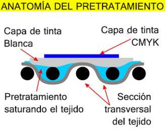 Pretreatment-Anatomy-Cross-Section-300x2