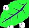 leaf2_1.png