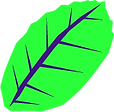 leaf1_1_edited.png