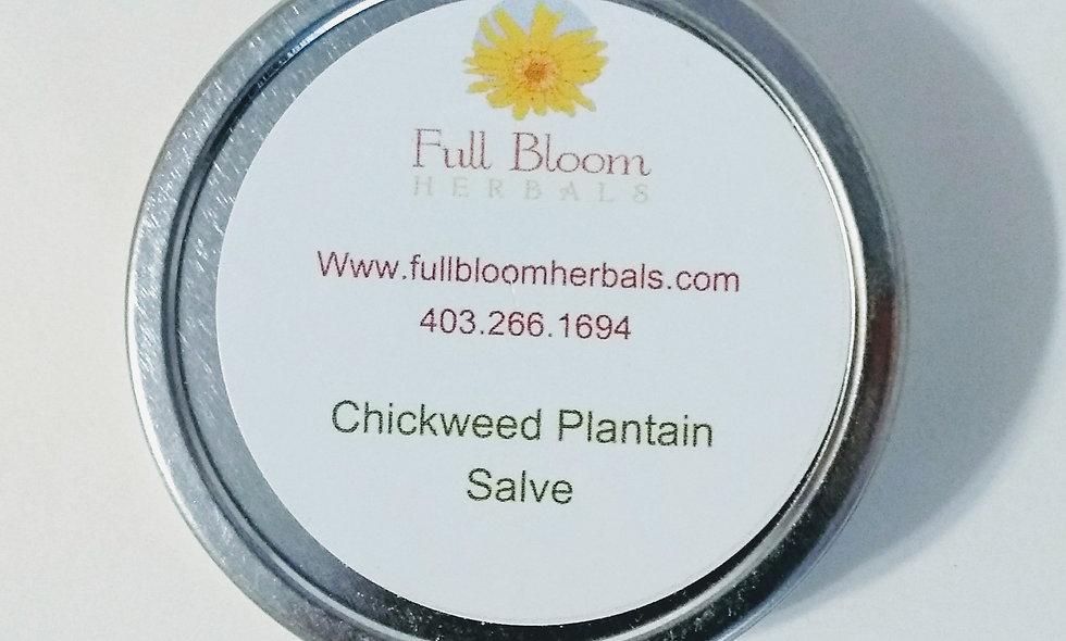 Chickweed Plantain Salve