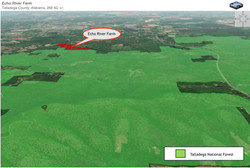 3D%20Aerial%20Showing%20Talladega%20Fore