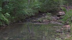 Four Mile Creek