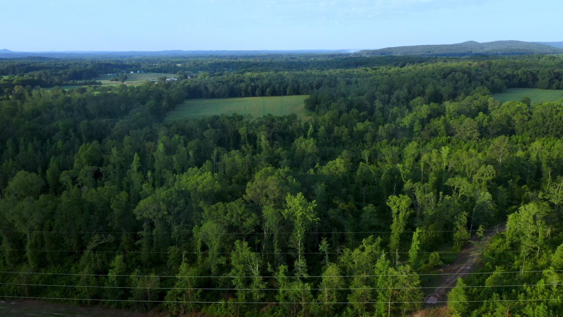 Aerial - Timber