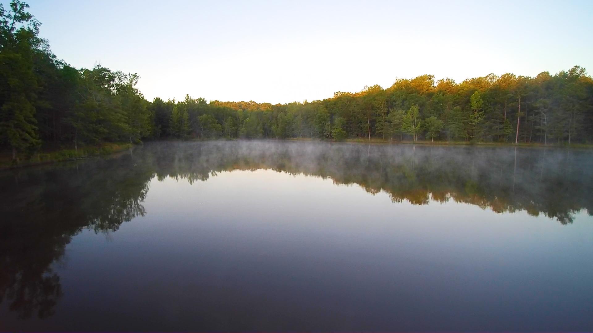 Aerial - Bass Lake