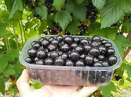 Черный десерт 07.jpg