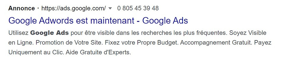 Image annonce Google ads et SEA
