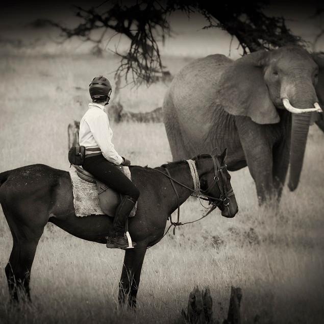 Offbeat Riding Safari 2020