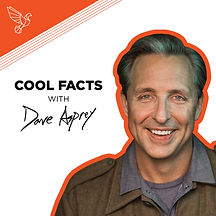 Cool-Facts-Dave_Instagram2-1024x1024.jpg