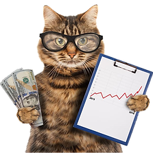 business cat.png