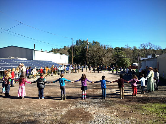 Clean energy is an important value to our Waldorf school.