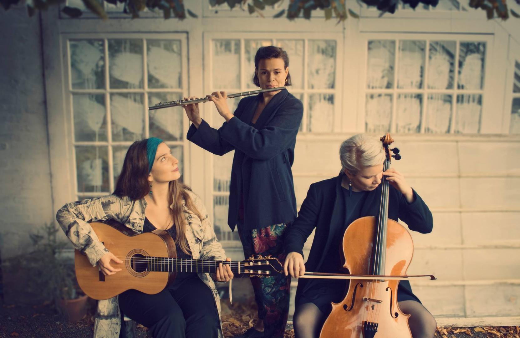 Trio Dandelion Pressefoto 2.jpg