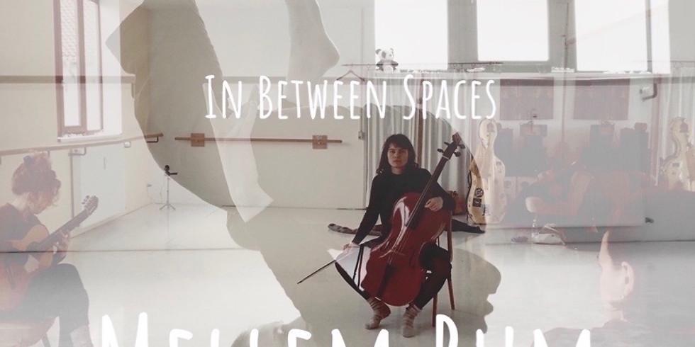 Mellem Rum // In Between Spaces