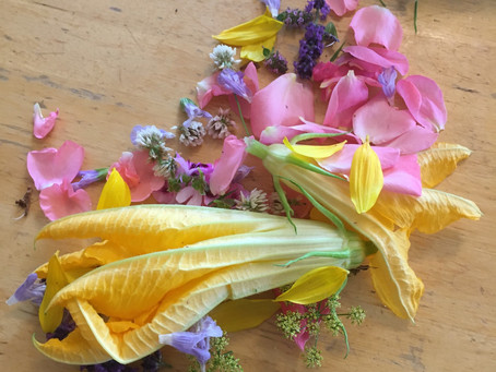 Activity of the day: Edible flower identification