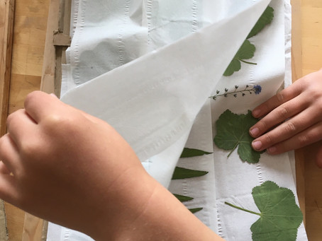 Activity of the Day: Pressed flowers with or without a flower press!