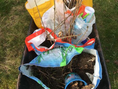 Bemrose Primary Gardening Club- week 1!