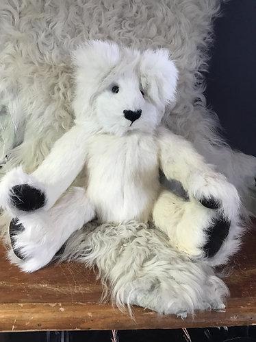 Bear 003