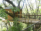ツリーハウス2.jpg