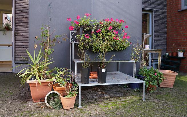 Wer will kann hier auch Gärtnern, Platz ist genug da.