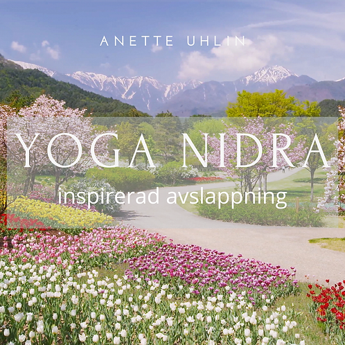 Meditation - Yoga Nidra