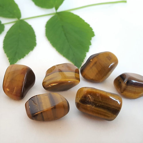 Tigeröga  - trumlad sten