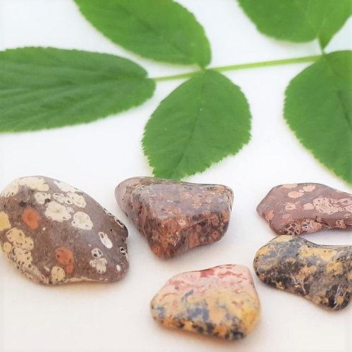 Jaspis, leopard - trumlad sten