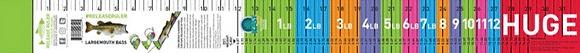 Release Ruler - Largemouth Bass Ruler