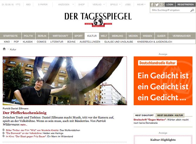 Daniel Zillmann @ Tagespiegel.de