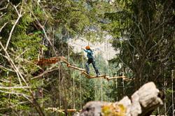 aerial-forest-adventure-park