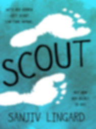 001 SCOUT_selected cover_resized.jpg