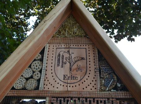 Inbetriebnahme des neuen Insektenhotels