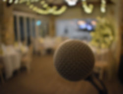 Live Singer Shotton Grange