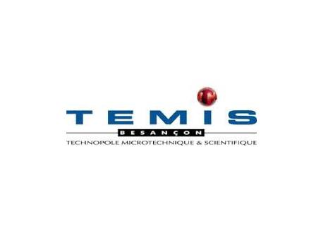 Logo_Temis