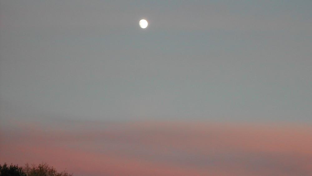 moon-111413